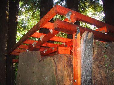 Treehouse Foundation