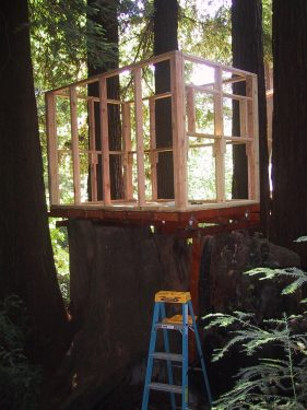 Treehouse Frame